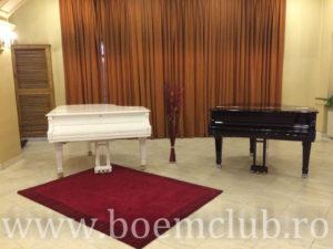 expozitia-de-piane-si-pianine-perzina-2